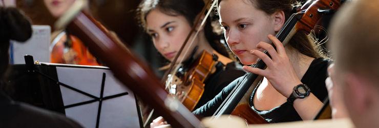 cello-740-x-240